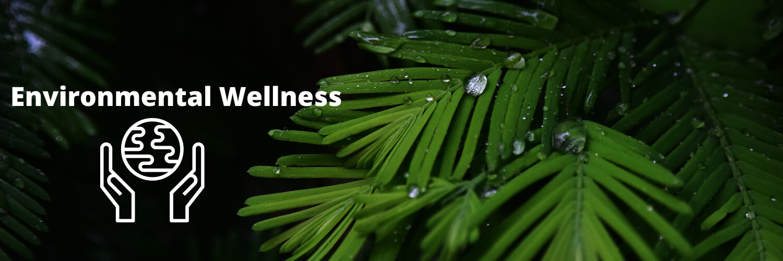 Environmental Wellness header